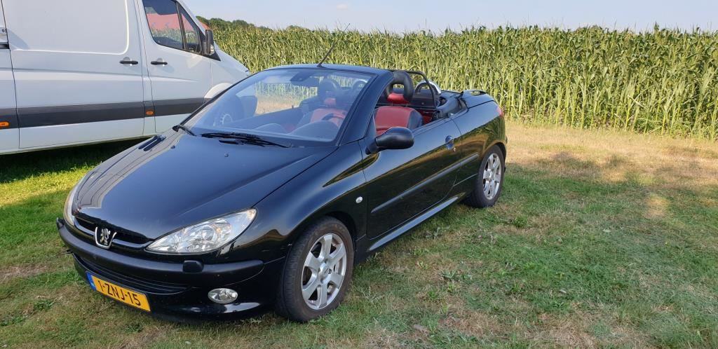 Peugeot 206 CC occasion - Theo Musch Auto's