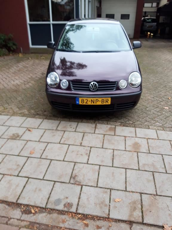 Volkswagen Polo occasion - APK Service Station Hiemstra
