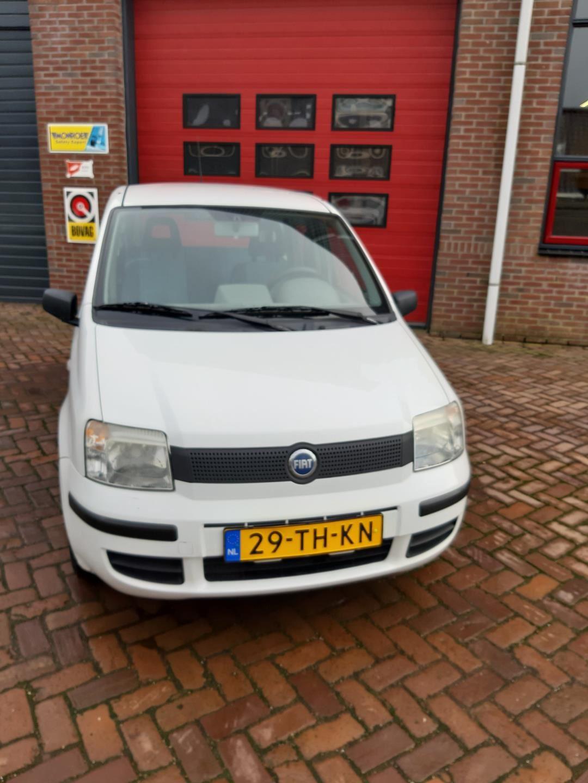Fiat Panda occasion - Koops Autobedrijf